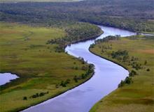 The Apalachicola River delta