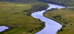 "Apalachicola River, known as ""America's Most Endangered River"""