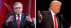Jeb Bush and Donald Trump